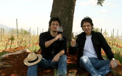 Bargylus le vin syrien de la résistance